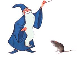 mago y raton